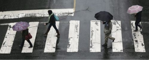 canada vicgtoria ped crossing in rain
